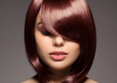 Ladies' hairstyle